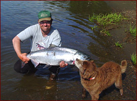 Alaskan Nushagak King Salmon and Guide
